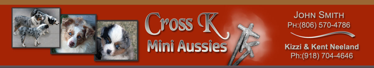Cross K Mini Aussies